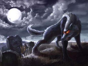 Le loup garou centerblog - Silver la porta di liv ...