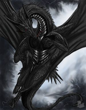 dating for dense dragons Singles sealed product  so there may be no better option for beating a metagame dense with it  bearded dragon games: 1: $1475: scaldinghotstore: 1.